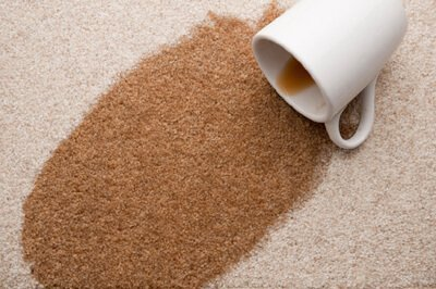 carpet stain protectant indianapolis